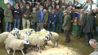 Download Trailer: The Hill Farmer in the Yorkshire Dales Video