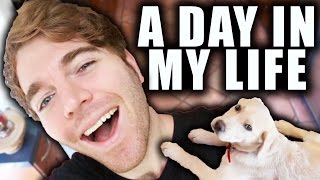 Download A DAY IN MY LIFE Video