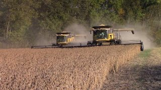 Download New Holland CR8090 Combines Harvesting Double Crop Soybeans Video