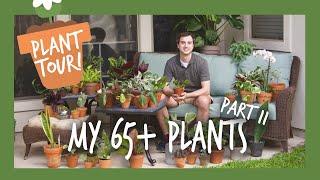 Download Houseplant Tour | My 65+ Plants: Part II Video
