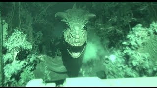 Download Dinosaur (HD POV) Disney's Animal Kingdom Video