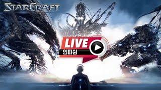 Download 【 인피쉰 LIVE 】 빨무 빠른무한 스타 팀플 스타크래프트 ( 2019-05-21 화요일 ) Video