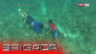 Download Brigada: Ulilang magkapatid, nangunguha ng pokpoklo bilang hanapbuhay Video