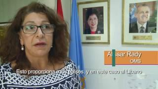 Download El Codex en el Líbano: apoyo a la producción y el comercio de aceite de oliva Video