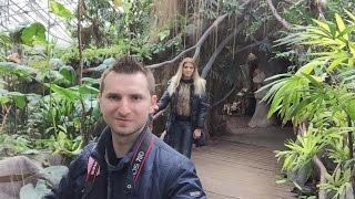 Download Prague ZOO Indonesian Jungle Video