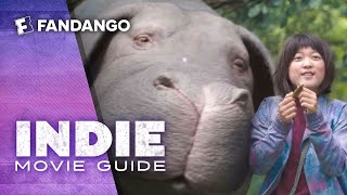 Download Indie Movie Guide - Okja, The Little Hours, T2 Trainspotting Video