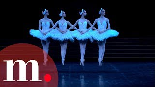 Download Swan Lake, Tchaikovsky - Dance of the Little Swans Video