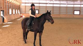 Download Riding a Lazy Horse Video