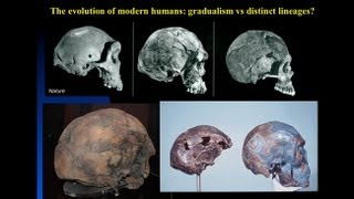 Download CARTA: The Origin of Us - Fossils of Modern Humans Interbreeding within and outside of Africa Video