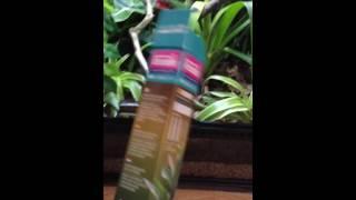 Download Jungle Dawn LED vs Exo Terra Repti Glo Video