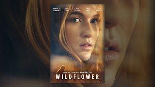 Download Wildflower Video