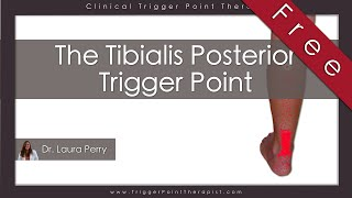 Download The Tibialis Posterior Trigger Point (Free Full Video) Video