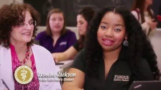 Download Purdue University College of Veterinary Medicine (PVM) Info Video Video