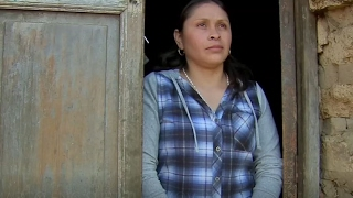 Download BITTER RETURN: DEPORTED TO GUATEMALA Video