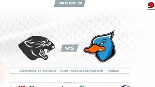 Download Panthers - Ducks Video