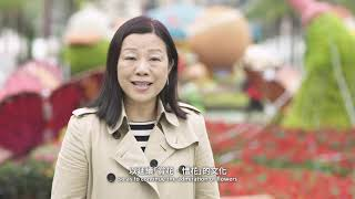 Download Hk Event Organisers Putting on a Green Show (2019) Video