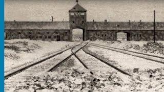 Download Architecture of Murder: The Auschwitz-Birkenau Blueprints Video