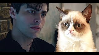 Download [Humor] Shadowhunters Cast - Crack!Video - «Alec Grumpy-Cat Lightwood» Video