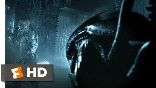 Download AVP: Alien vs. Predator (2004) - Alien vs. Predator Scene (2/5) | Movieclips Video