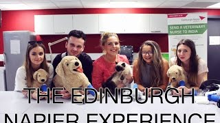 Download VLOG - The Edinburgh Napier Experience | Thumbelina Lillie Video