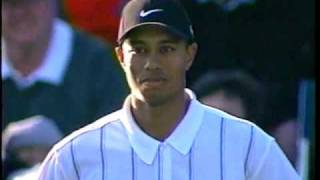 Download Tiger Woods 17th Hole @ TPC 2001 Video