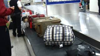 Download 2011.11.07松山機場檢疫犬(緝毒犬) Video