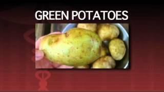 Download 10 Most Dangerous Foods Video