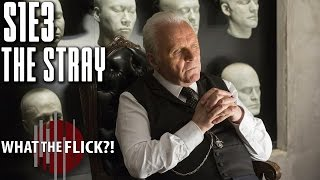 """Download Westworld Season 1, Episode 3 """"The Stray"""" Review Video"""