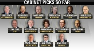 Download Will all Trump's cabinet picks be approved? Video