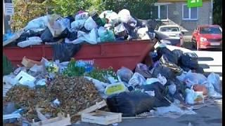 Download Челябинцы отсылают фото с мусором в приемную президента. Услышит ли глава просьбы о помощи? Video
