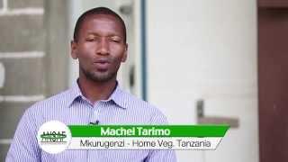 Download Machel Tarimo - Kilimo Biashara katika usafirishaji wa mazao ya mboga mboga kwenye masoko ya Ulaya Video