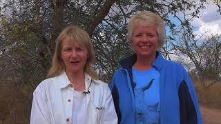 Download safariLIVE Crew meets you: Monique and Deana pay Djuma a visit! Video