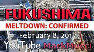 Download ☢ Feb 2017 ☢ FUKUSHIMA ☢ Excellent up to date coverage by Steve Quayle Video