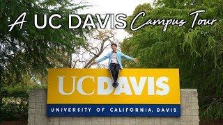 Download A UC Davis Campus Tour Video