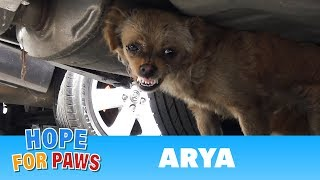 Download Arya decided to fight until she realized that I wasn't giving up on her and then... Video