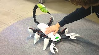 Download 10 ADVANCED ROBOTS ANIMAL YOU NEED TO SEE Video