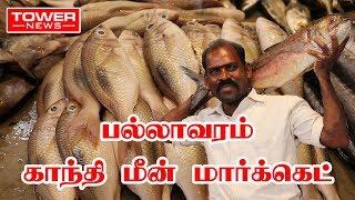 Download பல்லாவரம் காந்தி மீன் மார்க்கெட் | Pallavaram Fish Market | Ganthi meen santhai | Video