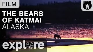 Download The Bears of Katmai, Alaska - Nature Live Cams Powered by EXPLORE.org Video
