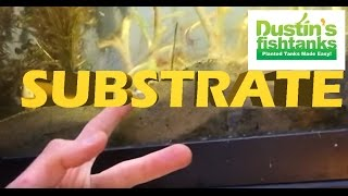Download Thanksgiving Aquarium substrate lesson Video