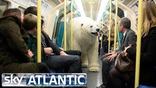 Download Polar Bear Let Loose In London - Fortitude Video