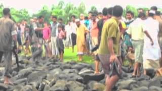 Download Rohingya refugees leave Burma to seek help in Bangladesh (The world's most forgotten people) Video