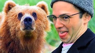 Download The Try Guys Feed Wild Animals In Alaska • The Try Vlog Video