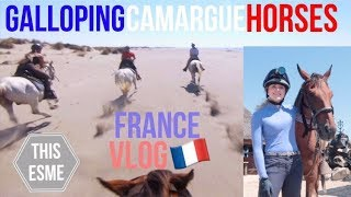 Download Horse Riding in the Camargue, Provence, France Travel Vlog | This Esme Video