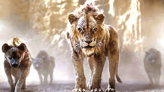 Download THE LION KING Full Movie Trailer # 3 (2019) Video