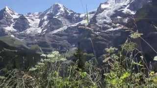 Download Lauterbrunnen - Grutschalp - Murren Day Hike Swiss Alps Switzerland Video