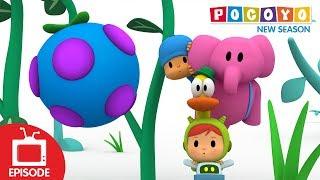 Download Pocoyo - Bumbleberry Surprise (S04E13) NEW EPISODES Video