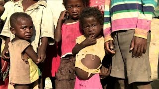 Download Nothing to eat but cactus in Madagascar's hunger capital Video