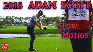 Download 2018 ADAM SCOTT DTL SLOW MOTION DRIVER GOLF SWING 1080 HD Video