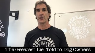 Download The Greatest Lie Told to Dog Owners Video