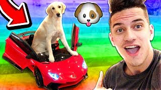 Download MOOSECRAFT'S PUPPY RIDES KIDS POWER WHEEL TOY CAR! (DIY DOG TOYS) Video